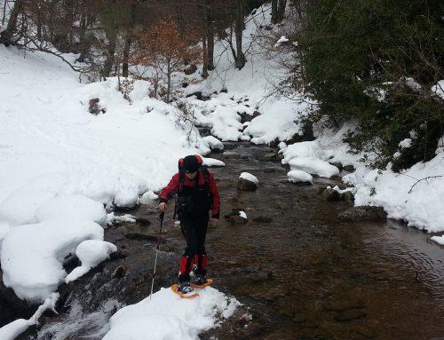 V Jornada de Travesía de Esquí en la Montaña Palentina