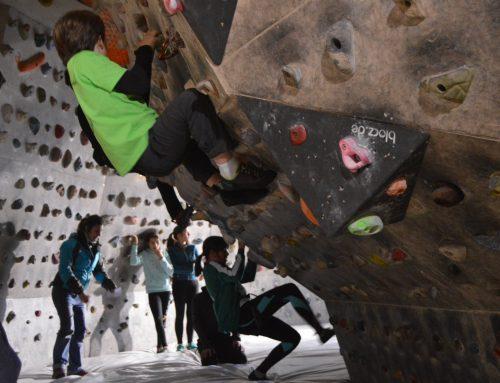 Medio centenar de niños disfrutan de la escalada en Valladolid
