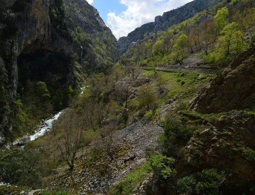 El Valle de Valdeón acogerá el 72º Campamento FEDME