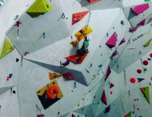 Ocho escaladores formarán el CTD de Castilla y León en 2019