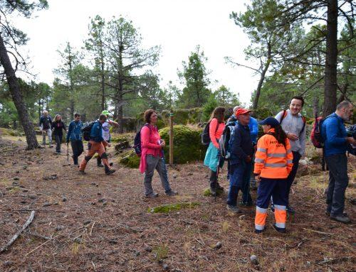 Marcha Provincial de Senderismo en Arenas de San Pedro