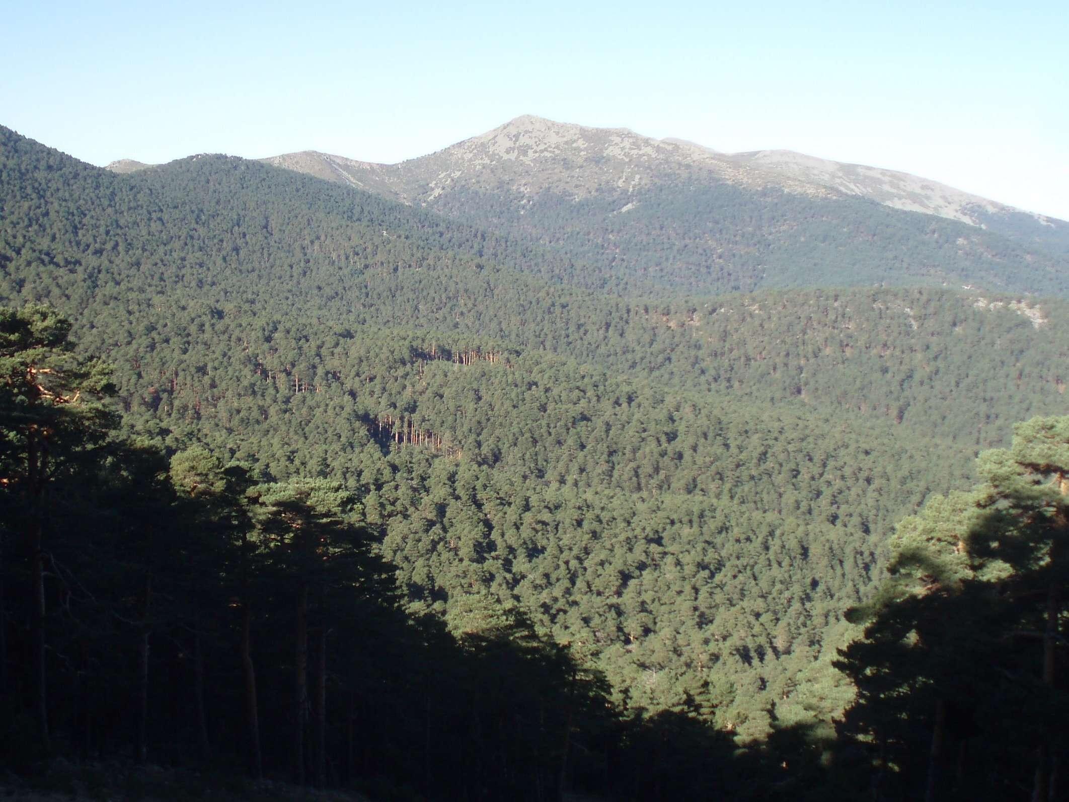 Aprobado el PRUG del Parque Nacional de la Sierra de Guadarrama