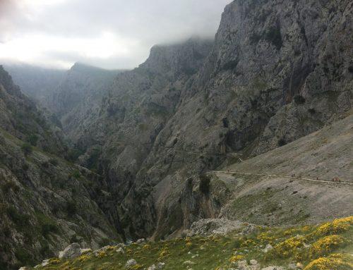 XV Marcha Provincial de León por Picos de Europa